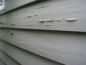 termites damage homes